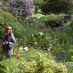 HOW TO MASTER YOUR GARDEN IN 6 SIMPLE STEPS