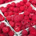 AMAZING HEALTH BENEFITS OF THE COMMON RASPBERRY