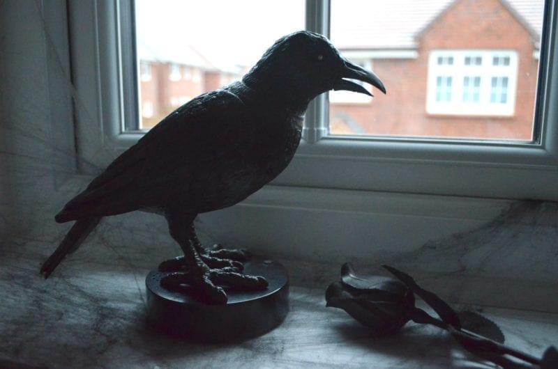 aldi-halloween-animated-crow